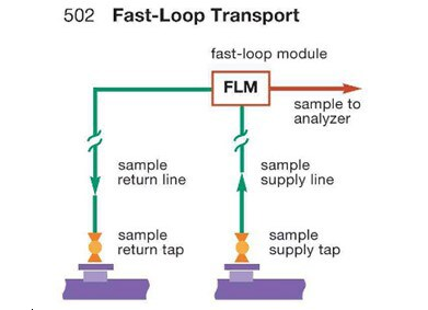 fast loop module in a fast loop transport system